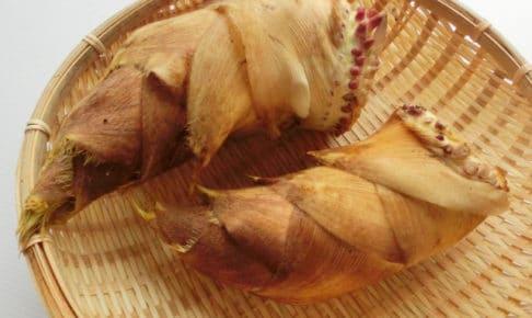 筍-たけのこデトックス効果!薬膳的効果で下ごしらえ料理