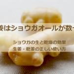 蒸し生姜は数十倍UP!ショウガの生と乾燥の効果と生姜・乾姜の正しい使い方