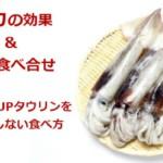 イカの効果と良い食べ合せ!肝臓機能UPタウリンをムダにしない食べ方