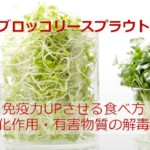 ブロッコリースプラウトの驚く効果!栄養吸収をアップさせる食べ方