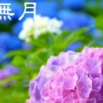 【水無月】ていねいに暮らす-6月1日は「氷の朔日-こおりのついたち」と「衣替え」の日