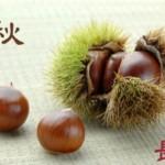 【9月・長月】夏の体から秋!季節の変わり目「秋バテを解消する」旬の食材
