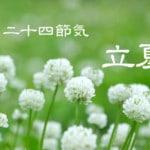 二十四節気の夏【立夏-りっか】5/5~5/20頃:夏に向けて体を整える