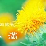 二十四節気の夏【小満-しょうまん】5/21~6/5頃:体に負担をかける季節たっぷり食べましょう!