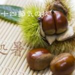 二十四節気の秋【処暑-しょしょ】8/23~9/7頃:食べ物は粘膜を潤すものでカゼに気をつける!