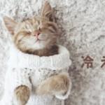 体の不調は「冷え」が原因|チェックシートでタイプ別の冷え取り温活を!