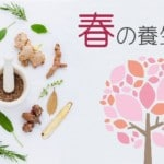 春の養生法|注意すべき生活と食養生~食べたい食材と春の薬膳とは