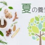 夏の養生法|注意すべき生活と食養生~食べたい食材と夏の薬膳