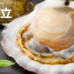 帆立貝(ベビーホタテ含)干し貝柱の栄養と効能!薬膳を作るコツ