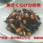 薬膳の効能解説付き「黒きくらげの佃煮」腸活や貧血・骨の強化レシピ