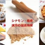 シナモン桂皮の漢方温活で毛細血管の修復効果!相乗効果食材とレシピ