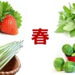 春の養生法|食べておきたい旬のおいしい食材と薬膳ポイント3つ