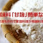 万能調味料「甘麹」簡単な作り方!塩麹・甘酒も作れて家庭料理が発酵料理に
