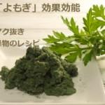 万病薬「よもぎ」効果効能!育て方とアク抜き・生葉や乾燥食品レシピ