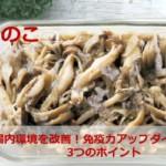 【きのこの塩麴ごま炒め】作り置きキノコで体のサビを防ぎ免疫力アップ!麹で腸内環境を改善