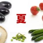 夏の養生法|食べておきたい旬のおいしい食材と薬膳ポイント3つ