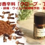 漢方香辛料「クローブ・丁香」抗菌・鎮痛・ウイルスの繁殖予防・温活効果