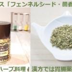 スパイス「フェンネルシード・茴香」効果とハーブ料理!漢方では胃腸薬