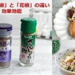 香辛料の山椒(サンショウ)と花椒(ホアジャオ)の違い・効果・使い方「怪味ソース」レシピ
