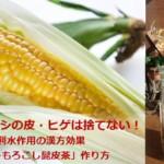 トウモロコシの皮・ヒゲは捨てない!利水作用「とうもろこし髭皮茶」の漢方効果と作り方