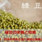 緑豆の栄養効果|解熱・解毒・利尿・むくみ解消食材は夏に最適!薬膳レシピ8選